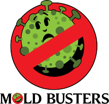 Mold_Busters_header