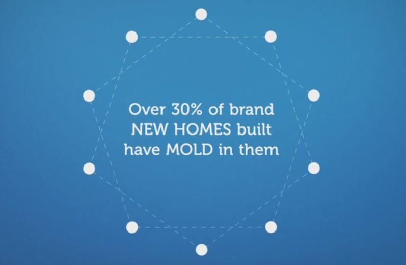 30% of new homes have mold
